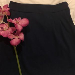 Banana Republic Navy Blue Skirt SZ 6